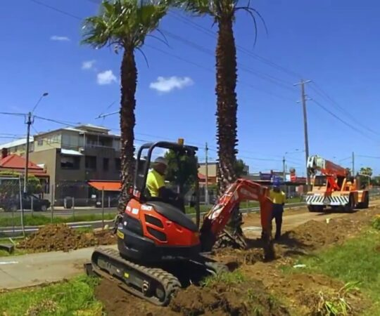 Palm Tree Removal-Miami Gardens FL Tree Trimming and Stump Grinding Services-We Offer Tree Trimming Services, Tree Removal, Tree Pruning, Tree Cutting, Residential and Commercial Tree Trimming Services, Storm Damage, Emergency Tree Removal, Land Clearing, Tree Companies, Tree Care Service, Stump Grinding, and we're the Best Tree Trimming Company Near You Guaranteed!